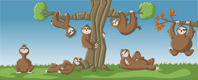 Cartoon brown sloths Stock Photos