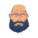 Cartoon Brutal Man Face with Beard. Vector. Illustration Royalty Free Stock Image