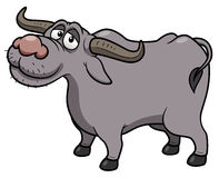 Cartoon Buffalo Royalty Free Stock Photo