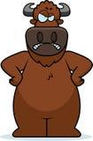 Cartoon Buffalo Angry Stock Images