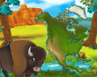 Cartoon buffalo with continent map Royalty Free Stock Photography