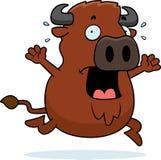 Cartoon Buffalo Panic Stock Images