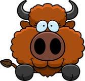 Cartoon Buffalo Peeking Royalty Free Stock Images