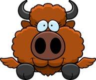 Cartoon Buffalo Wings Peeking Royalty Free Stock Image