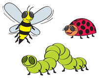 Cartoon Bugs Royalty Free Stock Photography