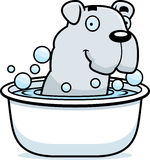 Cartoon Bulldog Bath Stock Images