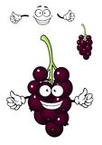 Cartoon bunch of currant berries Stock Image