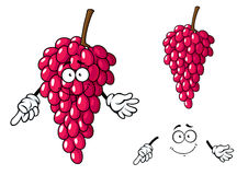 Cartoon bunch of red grape fruit character Royalty Free Stock Photos
