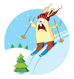 Cartoon bunny goes skiing Royalty Free Stock Image