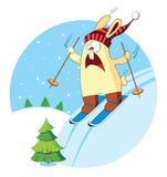 Cartoon bunny goes skiing Royalty Free Stock Image