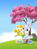 Cartoon bunny holding flower with colourful Easter eggs Royalty Free Stock Photos