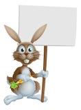 Cartoon bunny rabbit carrot and sign Royalty Free Stock Image