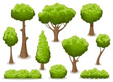 Cartoon bush and tree set. Vector trees and bushes isolated on white background, nature green forest plants for hedge or cute landscape vector illustration