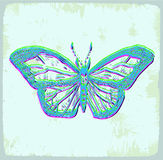 Cartoon butterfly illustration, vector icon Stock Photos