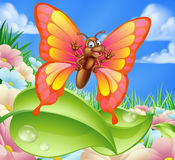 Cartoon Butterfly in Meadow Stock Image