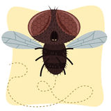 Cartoon fly. Cartoon buzz flying fly illustration vector illustration