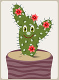 Cartoon cactus Royalty Free Stock Photo