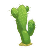 Cartoon  cactus Royalty Free Stock Image