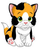 Cartoon calico kitten Royalty Free Stock Image