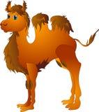 Cartoon camel Stock Photography
