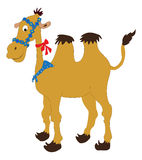 Cartoon camel with bridle. And bow over white Royalty Free Stock Image