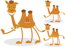 Cartoon camel Stock Photo