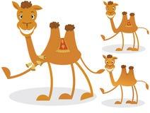 Cartoon camel Stock Photo