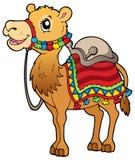 Cartoon camel with saddlery Royalty Free Stock Photo