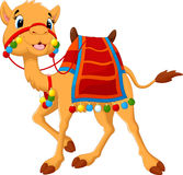 Cartoon camel with saddlery Stock Photography