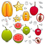 Cartoon carambola, lychee and apple guava fruits Stock Photography