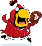 Cartoon Cardinal Baseball Stock Photography
