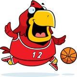 Cartoon Cardinal Basketball Stock Photo