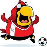Cartoon Cardinal Soccer Stock Images