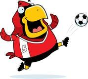 Cartoon Cardinal Soccer Kick Stock Photos