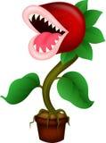 Cartoon Carnivorous plant Stock Photography