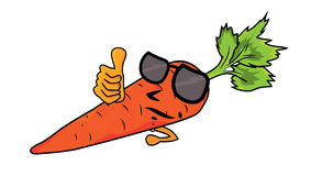 Cartoon Carrot character  illustration Royalty Free Stock Images