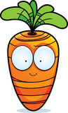 Cartoon Carrot Royalty Free Stock Photos