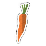 Cartoon carrot vegetable nutrition icon Royalty Free Stock Photography