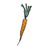 Cartoon carrots. Vector illustration. Drawing by hand. Royalty Free Stock Photography