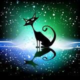 Cartoon cat Stock Image