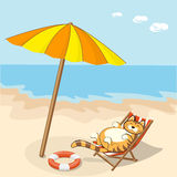 Cartoon cat on the beach Royalty Free Stock Images