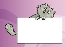Cartoon cat with board or card Royalty Free Stock Photo