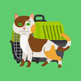 Cartoon cat and carrier. Cartoon cat and cat carrier on green. Vector illustration Royalty Free Stock Image