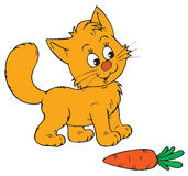Cartoon cat and carrot Stock Photography