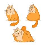 Cartoon cat character design set Stock Photos