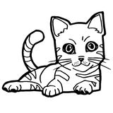 Cartoon Cat Coloring Page for kid Stock Images
