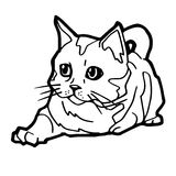 Cartoon Cat Coloring Page Stock Photos