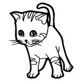 Cartoon Cat Coloring Page Stock Images