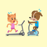 Cartoon cat and dog doing exercise with exercise bike and treadmill Royalty Free Stock Photo
