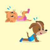 Cartoon cat and dog doing exercise for health Stock Image
